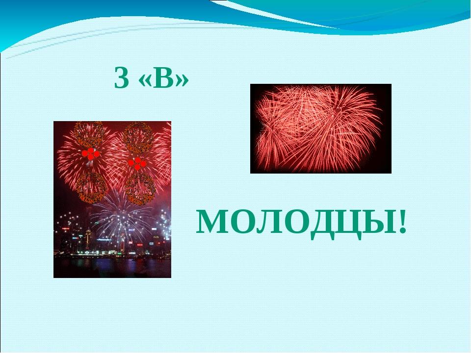 МОЛОДЦЫ! 3 «В»
