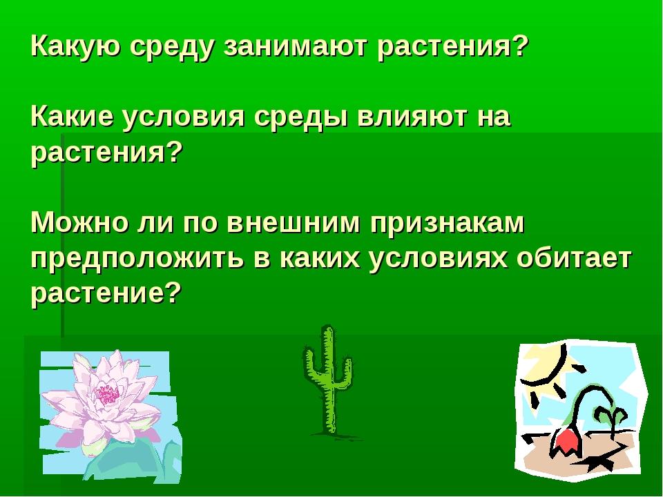 Какую среду занимают растения? Какие условия среды влияют на растения? Можно...