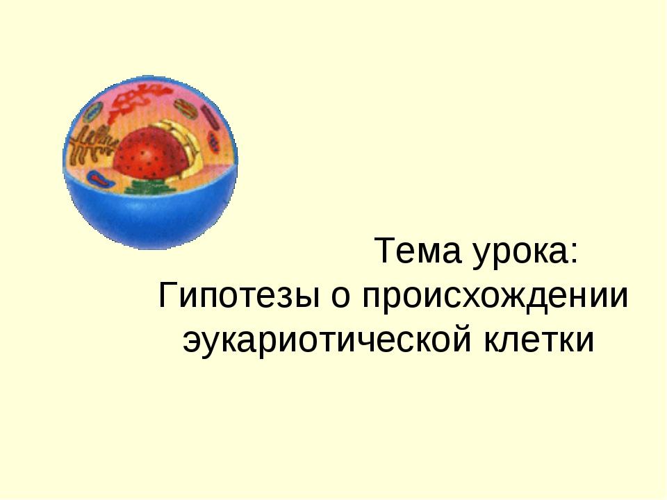 Тема урока: Гипотезы о происхождении эукариотической клетки
