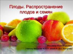 Плоды. Распространение плодов и семян Митленер Юлия Юрьевна учитель биологии
