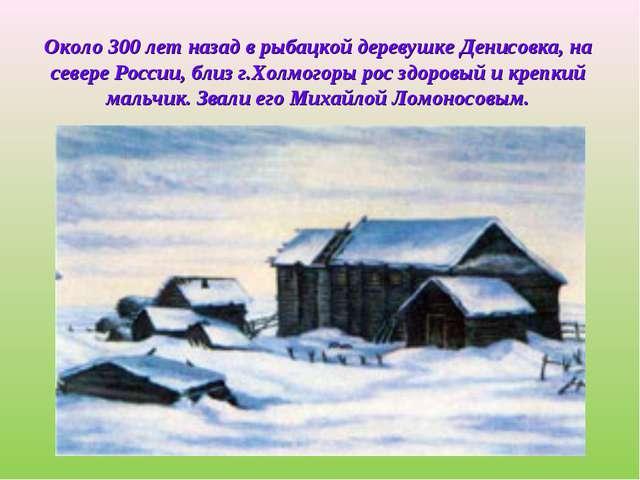 Около 300 лет назад в рыбацкой деревушке Денисовка, на севере России, близ г...