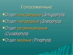 Голосеменные Отдел гинкговидные (Ginkgophyta) Отдел гнетовидные (Gnetophyta)