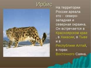 Ирбис На территории России ареала это - северо-западная и северная окраина. О