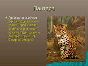 Пантера Ареал рода включает Африку, крайний юго-восток Европы, Азию кроме сев