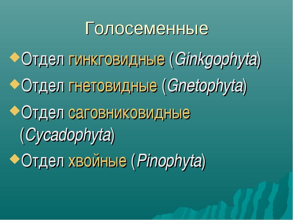 Голосеменные Отдел гинкговидные (Ginkgophyta) Отдел гнетовидные (Gnetophyta)...