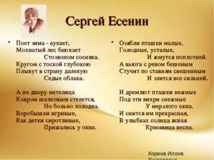 Сергей Есенин Поет зима - аукает, Мохнатый лес баюкает  Стозв