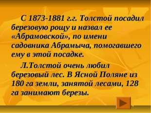 С 1873-1881 г.г. Толстой посадил березовую рощу и назвал ее «Абрамовской»,