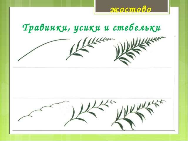 Травинки, усики и стебельки жостово