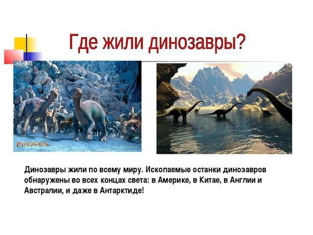 Динозавры жили по всему миру. Ископаемые останки динозавров обнаружены во все...