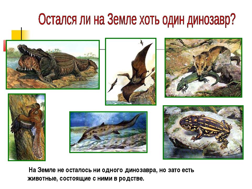На Земле не осталось ни одного динозавра, но зато есть животные, состоящие с...