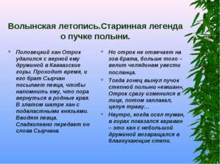 Волынская летопись.Старинная легенда о пучке полыни. Половецкий хан Отрок уда