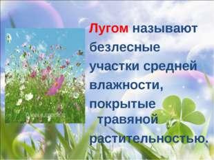 Лугом называют безлесные участки средней влажности, покрытые травяной растите
