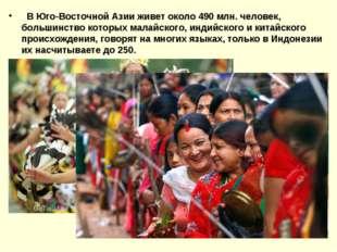 В Юго-Восточной Азии живет около 490 млн. человек, большинство которых малай