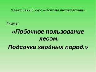 Элективный курс «Основы лесоводства» Тема: «Побочное пользование лесом. Подсо