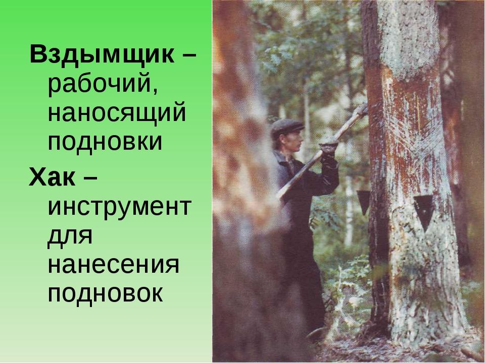 Вздымщик – рабочий, наносящий подновки Хак – инструмент для нанесения подновок