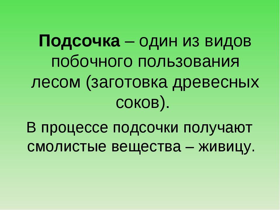 Подсочка – один из видов побочного пользования лесом (заготовка древесных со...