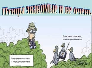 Презентацию подготовила Учитель биологии МКОУ «Ненецкая СКОШИ» Пшеничная Г.А.