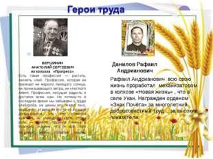 ВЕРШИНИН АНАТОЛИЙ СЕРГЕЕВИЧ из колхоза «Прогресс» Есть такая профессия — раст