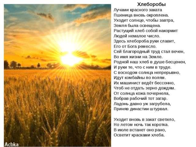 Хлеборобы Лучами красного заката Пшеница вновь окроплена. Уходит солнце, чтоб...
