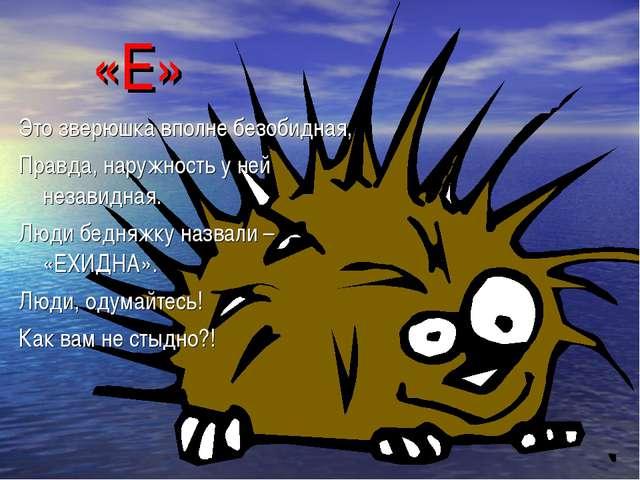 «Е» Это зверюшка вполне безобидная, Правда, наружность у ней незавидная. Люди...