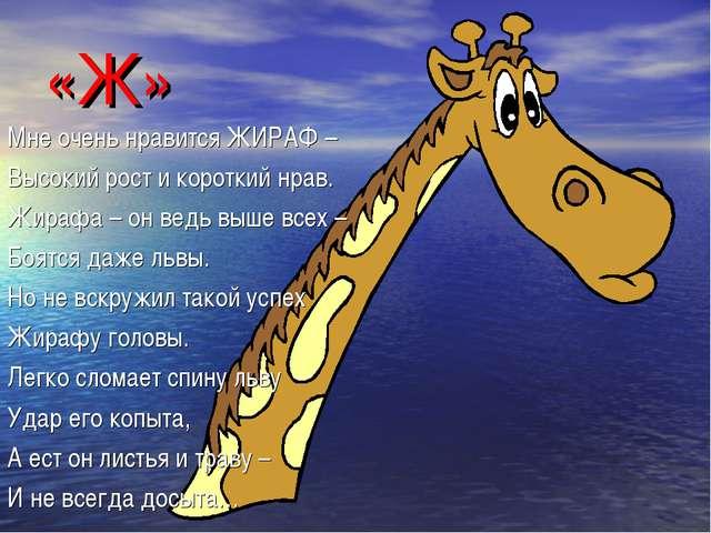 «Ж» Мне очень нравится ЖИРАФ – Высокий рост и короткий нрав. Жирафа – он ведь...