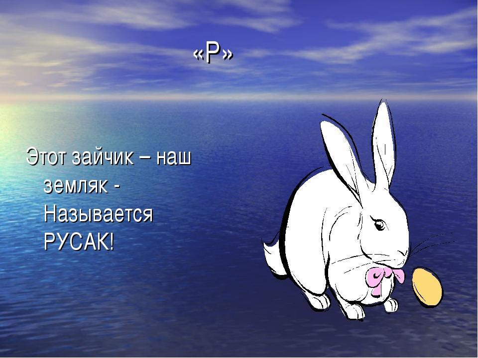 «Р» Этот зайчик – наш земляк - Называется РУСАК!