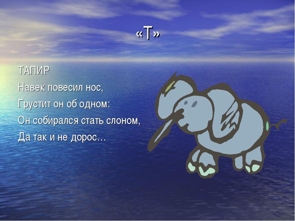 «Т» ТАПИР Навек повесил нос, Грустит он об одном: Он собирался стать слоном,...