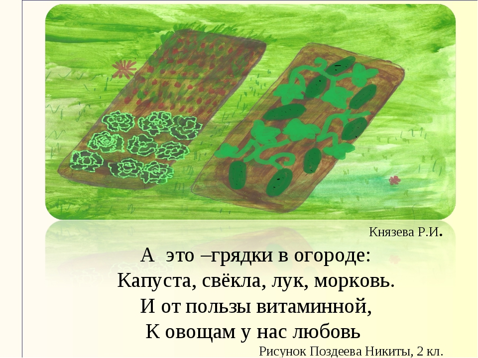 Князева Р.И. А это –грядки в огороде: Капуста, свёкла, лук, морковь. И от пол...