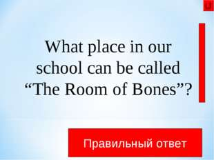 "What place in our school can be called ""The Room of Bones""? This place is a b"
