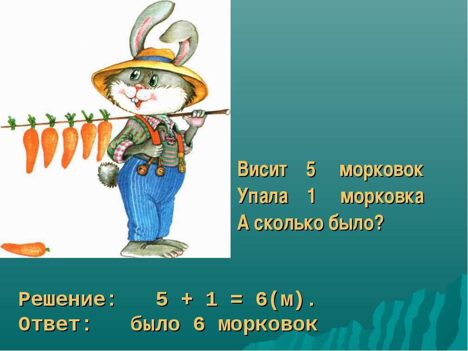 Висит 5 морковок Упала 1 морковка А сколько было? Решение: 5 + 1 = 6(м). Отве...