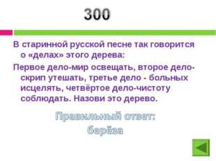 В старинной русской песне так говорится о «делах» этого дерева: Первое дело-м