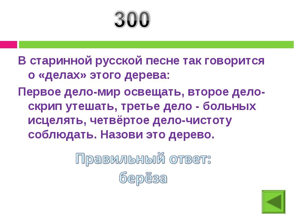 В старинной русской песне так говорится о «делах» этого дерева: Первое дело-м...
