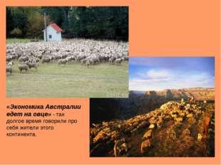 «Экономика Австралии едет на овце» - так долгое время говорили про себя жител