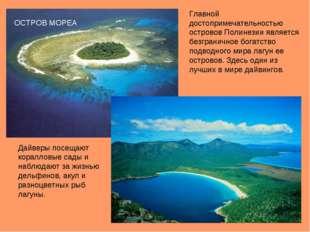 Главной достопримечательностью островов Полинезии является безграничное богат