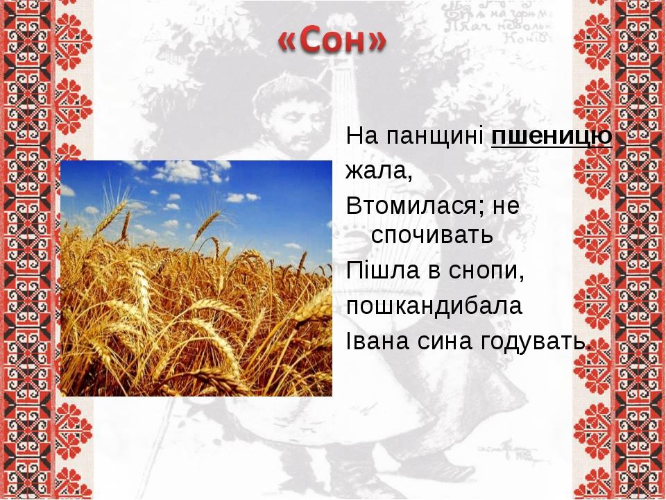 На панщині пшеницю жала, Втомилася; не спочивать Пішла в снопи, пошкандибал...