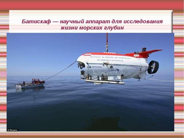 Батискаф — научный аппарат для исследования жизни морских глубин