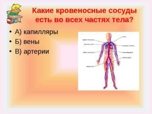 Какие кровеносные сосуды есть во всех частях тела? А) капилляры Б) вены В) ар
