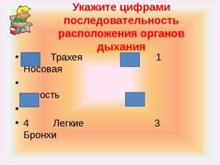 Укажите цифрами последовательность расположения органов дыхания 2 Трахея 1 Но