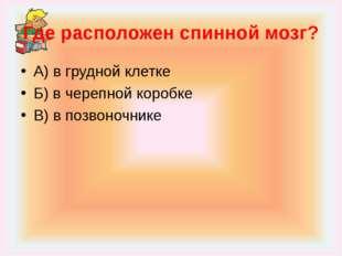 Где расположен спинной мозг? А) в грудной клетке Б) в черепной коробке В) в п