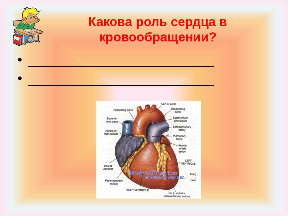Какова роль сердца в кровообращении? __________________________ _____________...