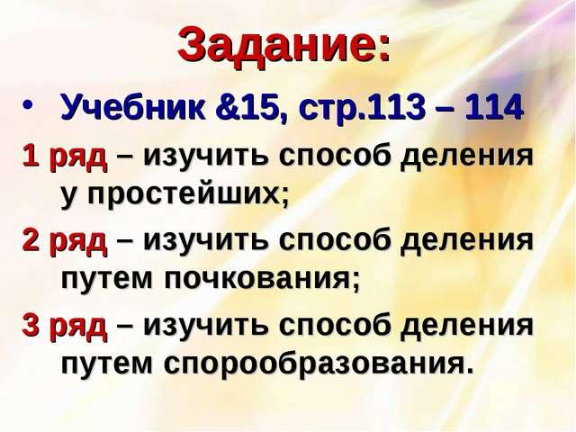Задание: Учебник &15, стр.113 – 114 1 ряд – изучить способ деления у простейш...