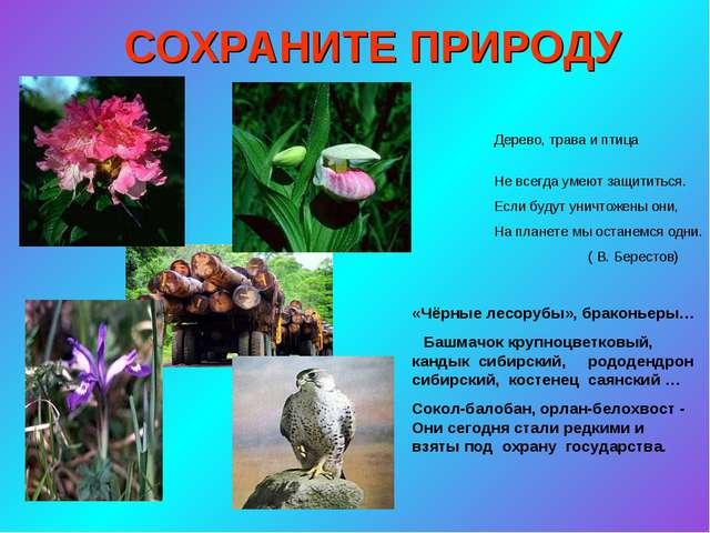 СОХРАНИТЕ ПРИРОДУ Дерево, трава и птица Не всегда умеют защититься. Если буду...
