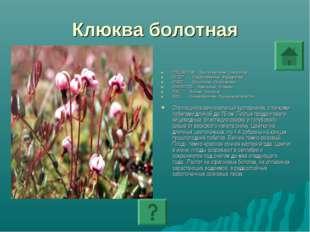 Клюква болотная ПОДЦАРСТВО: Высшие растения - Embryophyta ОТДЕЛ: Покрытосемен