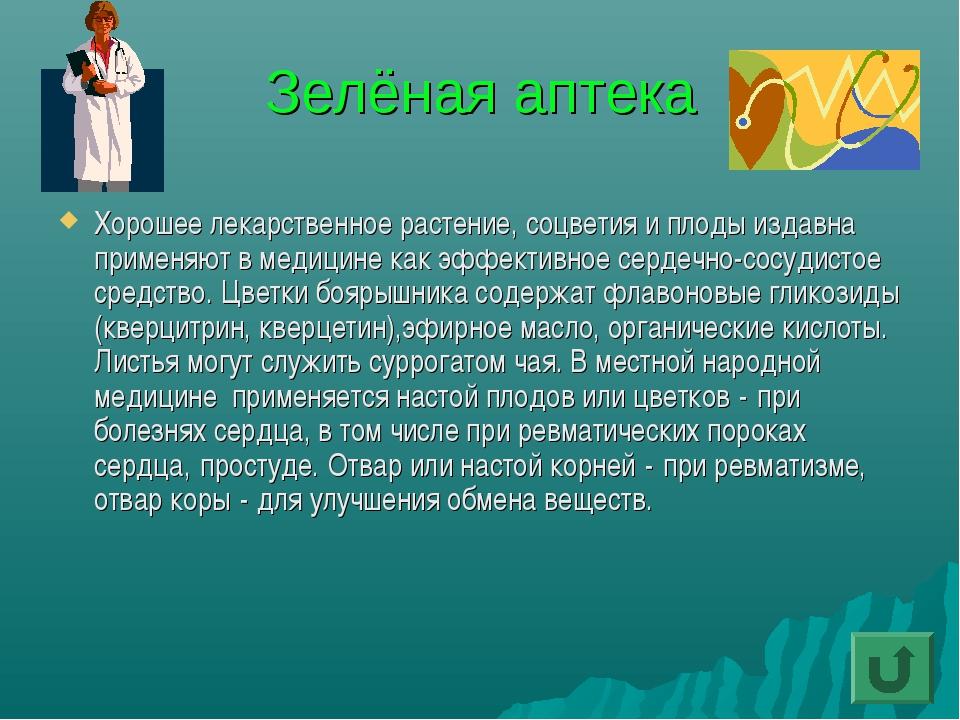 Зелёная аптека Хорошее лекарственное растение, соцветия и плоды издавна приме...