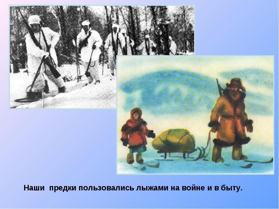 Наши предки пользовались лыжами на войне и в быту.