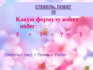 Какую формулу имеет побег: ? + ? + ? = ? Стебель+ лист + Почки = Побег