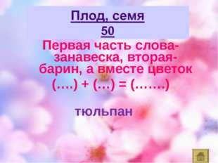 Первая часть слова- занавеска, вторая- барин, а вместе цветок (….) + (…) = (…