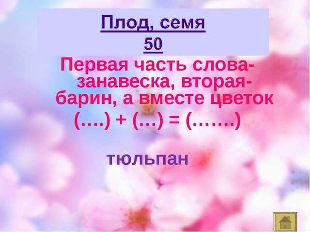 Первая часть слова- занавеска, вторая- барин, а вместе цветок (….) + (…) = (…...
