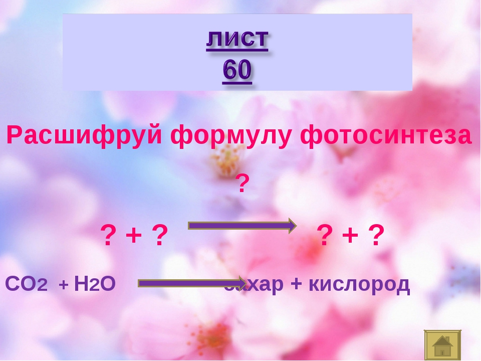 СО2 + Н2О сахар + кислород Расшифруй формулу фотосинтеза ? ? + ? ? + ?