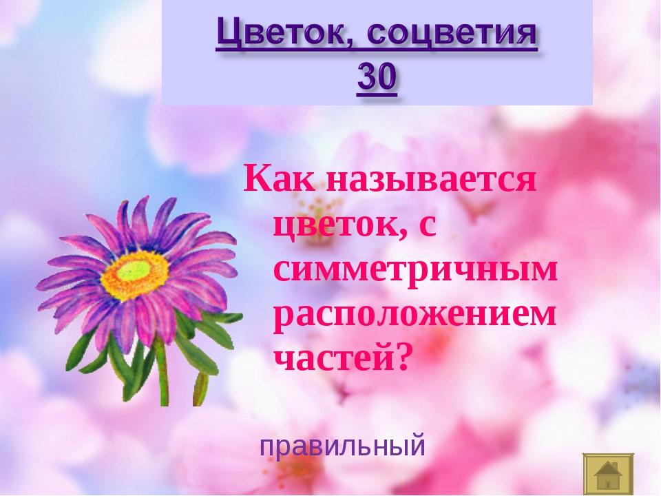 Как называется цветок, с симметричным расположением частей? правильный